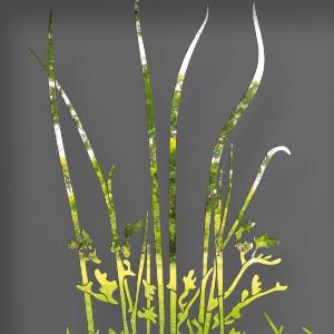 http://zoom-tole-vegetal-decoupe-laser-portail-alu-parkia